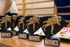 statuetki czarne judo ustawione w rzędzie przygotowane na turniej