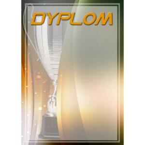 DYP97 dyplom medal statuetka trofeum nagroda